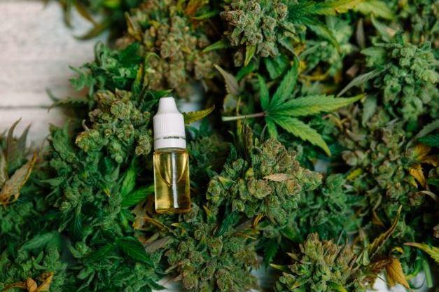 Bulk Cannabis Poteau, Cannabis Reseller Poteau bulk cbd Poteau